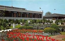 spo021642 - Horse Racing Postcard Post Card
