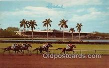 spo021648 - Horse Racing Postcard Post Card