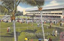 spo021649 - Horse Racing Postcard Post Card