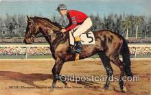 spo021656 - Horse Racing Postcard Post Card