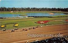 spo021658 - Horse Racing Postcard Post Card