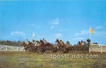 spo021660 - Horse Racing Postcard Post Card
