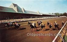 spo021668 - Horse Racing Postcard Post Card