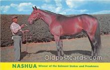 spo021673 - Horse Racing Postcard Post Card