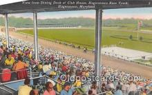 spo021677 - Horse Racing Postcard Post Card