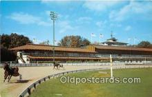 spo021679 - Horse Racing Postcard Post Card