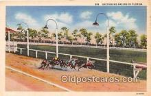 spo021683 - Horse Racing Postcard Post Card