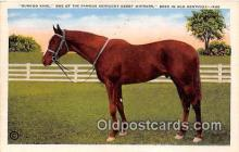 spo021693 - Horse Racing Postcard Post Card