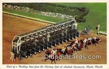 spo021697 - Horse Racing Postcard Post Card