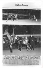 spo021702 - Horse Racing Postcard Post Card