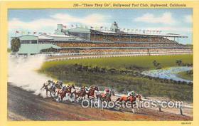 spo021703 - Horse Racing Postcard Post Card
