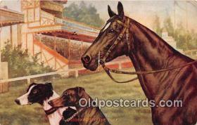 spo021706 - Horse Racing Postcard Post Card