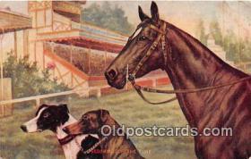 spo021707 - Horse Racing Postcard Post Card