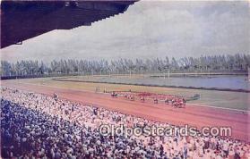 spo021708 - Horse Racing Postcard Post Card