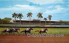 spo021710 - Horse Racing Postcard Post Card