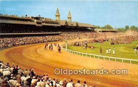 spo021718 - Horse Racing Postcard Post Card