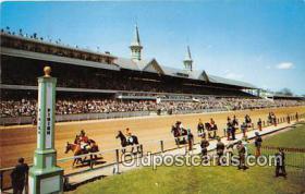 spo021719 - Horse Racing Postcard Post Card