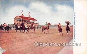 spo021721 - Horse Racing Postcard Post Card