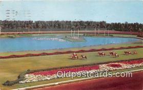 spo021723 - Horse Racing Postcard Post Card
