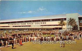 spo021726 - Horse Racing Postcard Post Card