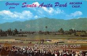spo021727 - Horse Racing Postcard Post Card