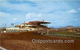 spo021728 - Horse Racing Postcard Post Card