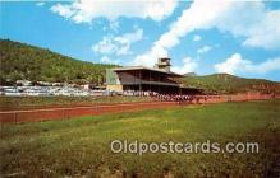 spo021735 - Horse Racing Postcard Post Card