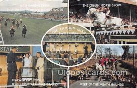 spo021737 - Horse Racing Postcard Post Card