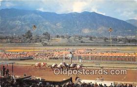spo021740 - Horse Racing Postcard Post Card