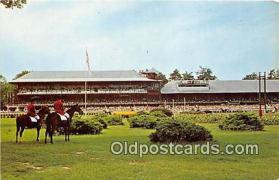 spo021742 - Horse Racing Postcard Post Card