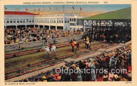 spo021752 - Horse Racing Postcard Post Card