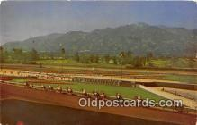 spo021766 - Horse Racing Postcard Post Card