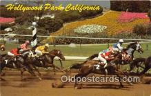 spo021767 - Horse Racing Postcard Post Card