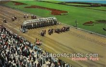 spo021773 - Horse Racing Postcard Post Card