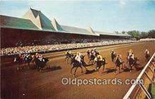spo021775 - Horse Racing Postcard Post Card