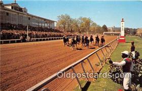 spo021777 - Horse Racing Postcard Post Card
