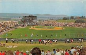 spo023277 - Little League Baseball, South Williamsport, PA USA, Baseball Stadium Postcard Postcards