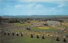 spo023628 - Howard J. Lamade Memorial Field Site of the Annual Little League World Series Williamsport, Pennsylvania Base Ball Baseball Stadium Postcards Post Card