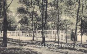 spo024345 - Tennis Postcard