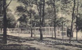 spo024346 - Tennis Postcard