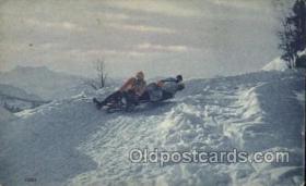 Bob-sleigh