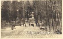 spo025198 - Toboggan Slide, M.S. C. Amherst, Mass, USA Ice Skating, Skiing, Winter Sports Postcard Postcards