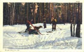 spo025242 - Allegany State Park, NY, USA Ski Sking Postcard Post Cards