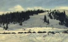 spo025263 - Summit of Berthoud Pass, Colorado, USA Ski Sking Postcard Post Cards