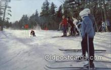 spo025389 - NH, USA Ski, Skiing Postcard Post Card Old Vintage Antique