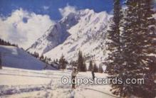 spo025597 - Alta, UT USA Skiing Postcard Post Card Old Vintage Antique