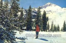 spo025600 - Mt Millicent Ski Lift, Brighton, UT USA Skiing Postcard Post Card Old Vintage Antique