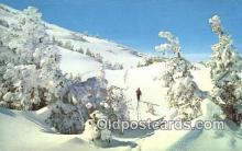 spo025602 - Skiing Postcard Post Card Old Vintage Antique