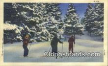 spo025604 - Linen Skiing Postcard Post Card Old Vintage Antique