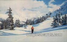 spo025605 - Skiing Postcard Post Card Old Vintage Antique